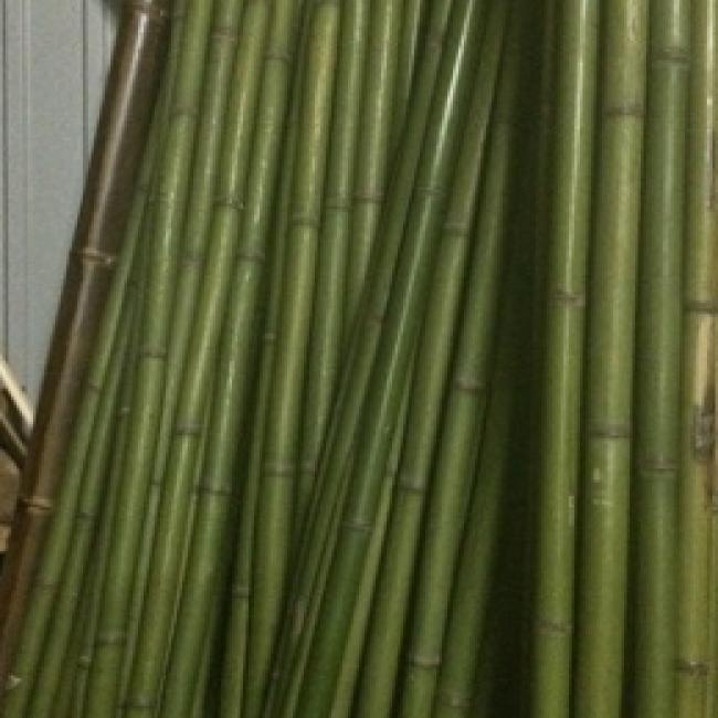 Ствол из бамбука зеленый d 50-60мм L=3м