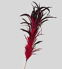 Декоративный веничек малиновый бордо 150 см