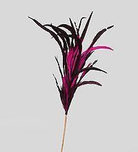 Декоративный веничек из перьев (о. Бали)